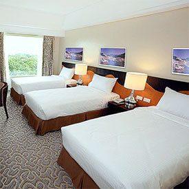 Guest Room (Triple)